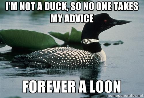 Actual advice mallard dating