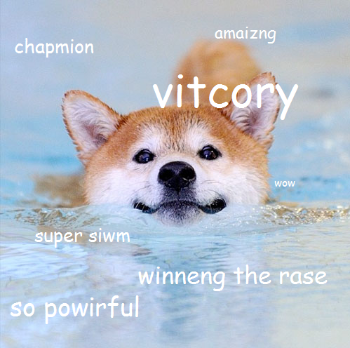 c92 swimming doge doge know your meme