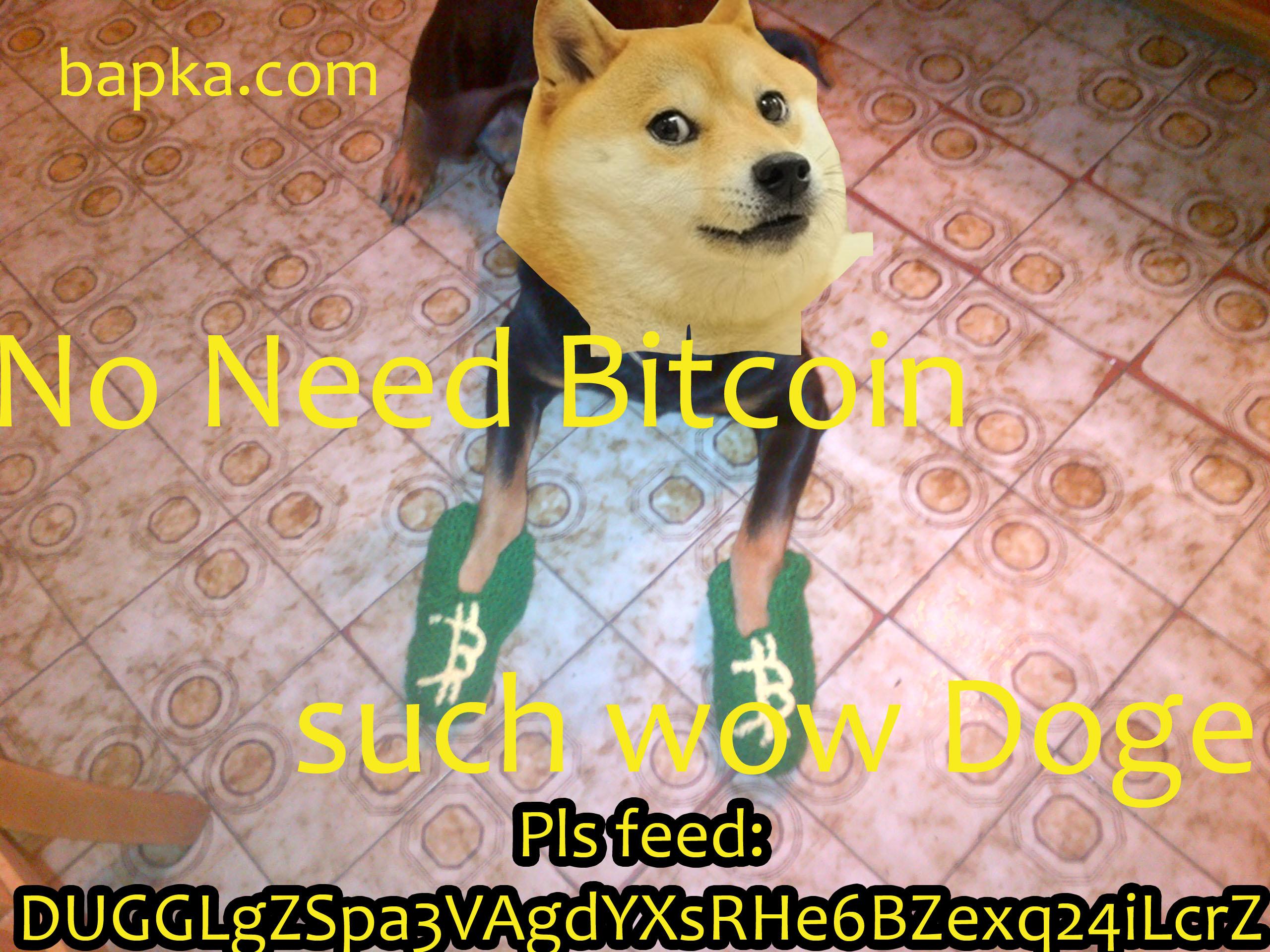 Resultado de imagem para cryptocurrency memes