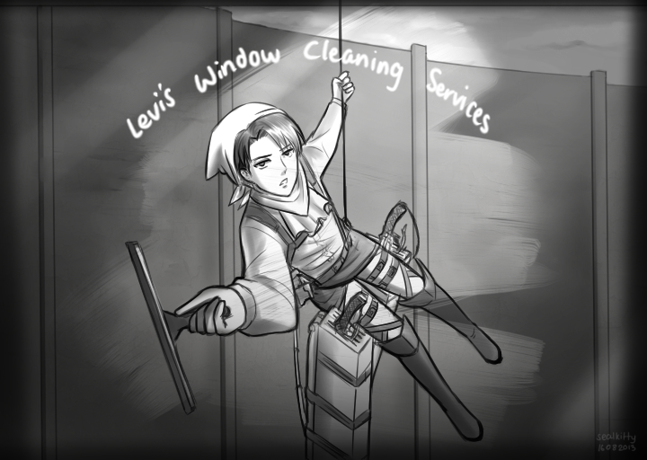 ead snk aot levi's window cleaning services cleaning levi know
