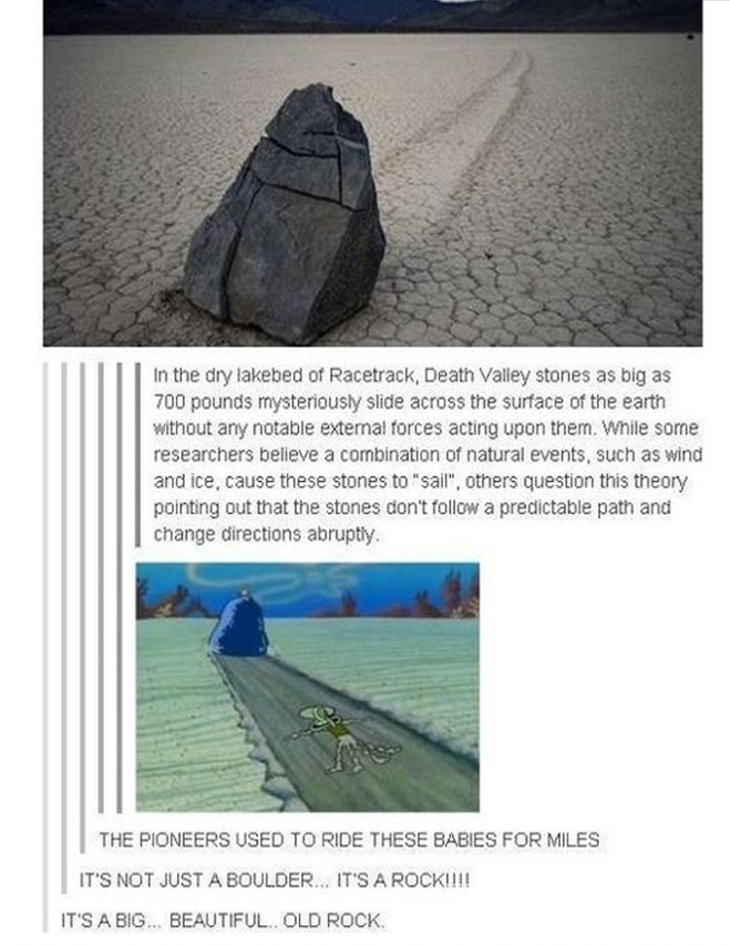 The pioneers used to ride these babies for miles | Tumblr | Know ...