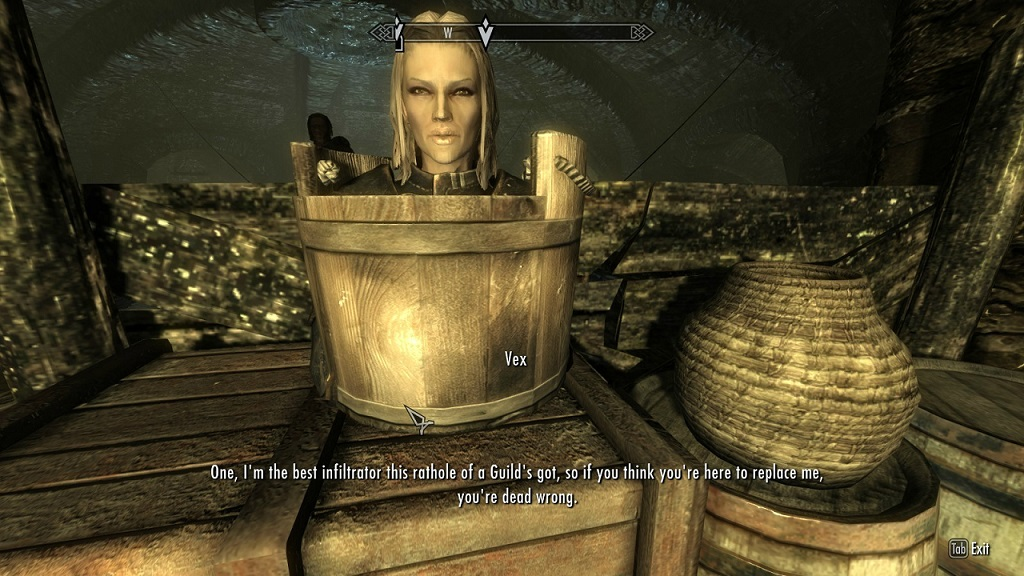 Sneak level 100 video game logic know your meme for Best house designs skyrim