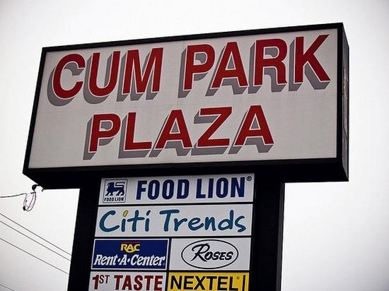 CUM PARK PLAZA FOOD LION. Citi Trends Ros RAC Rent A Center ST TASTE NEXTEL