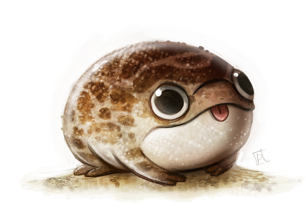 Daily paint 670 desert frog quickie the desert rain frog know