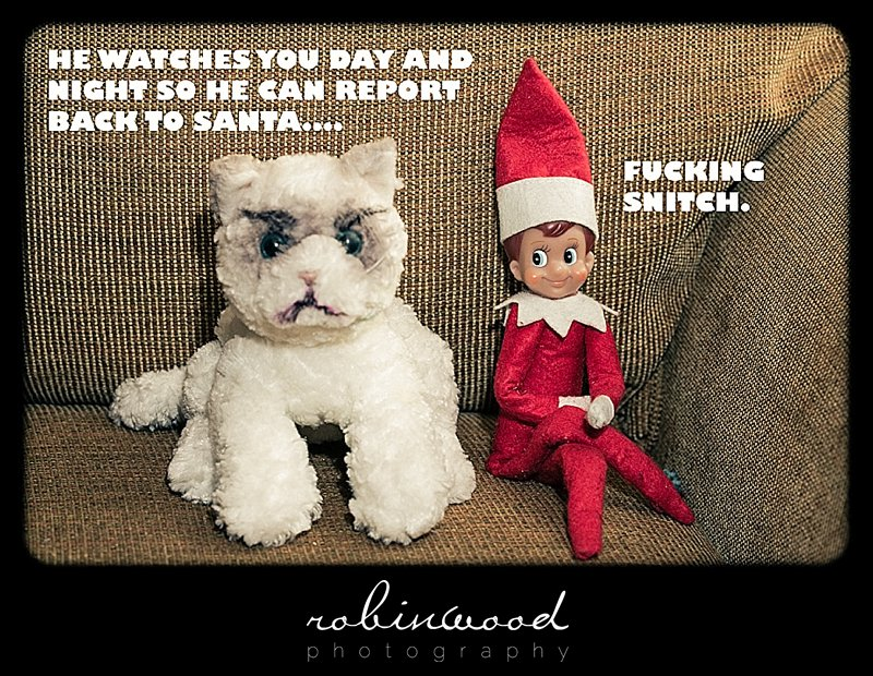 8e0 elf on the shelf image gallery know your meme