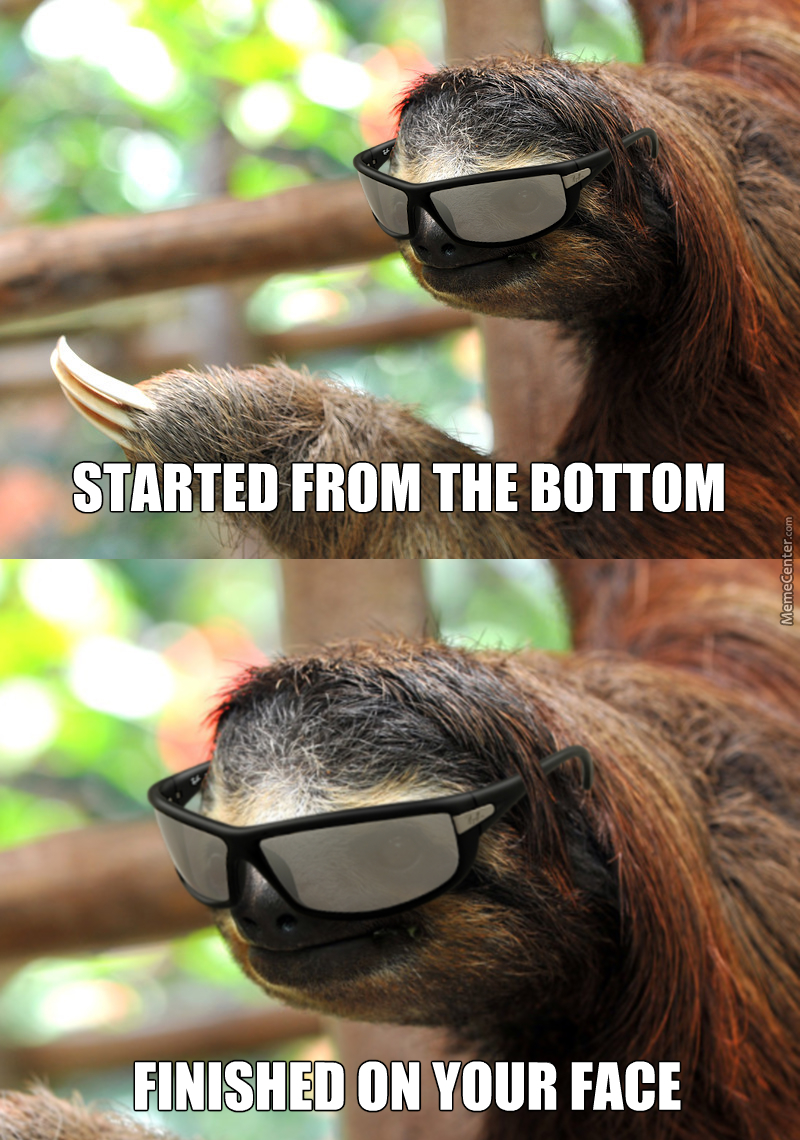 2ab rape sloth image gallery know your meme,Sloth Meme Images