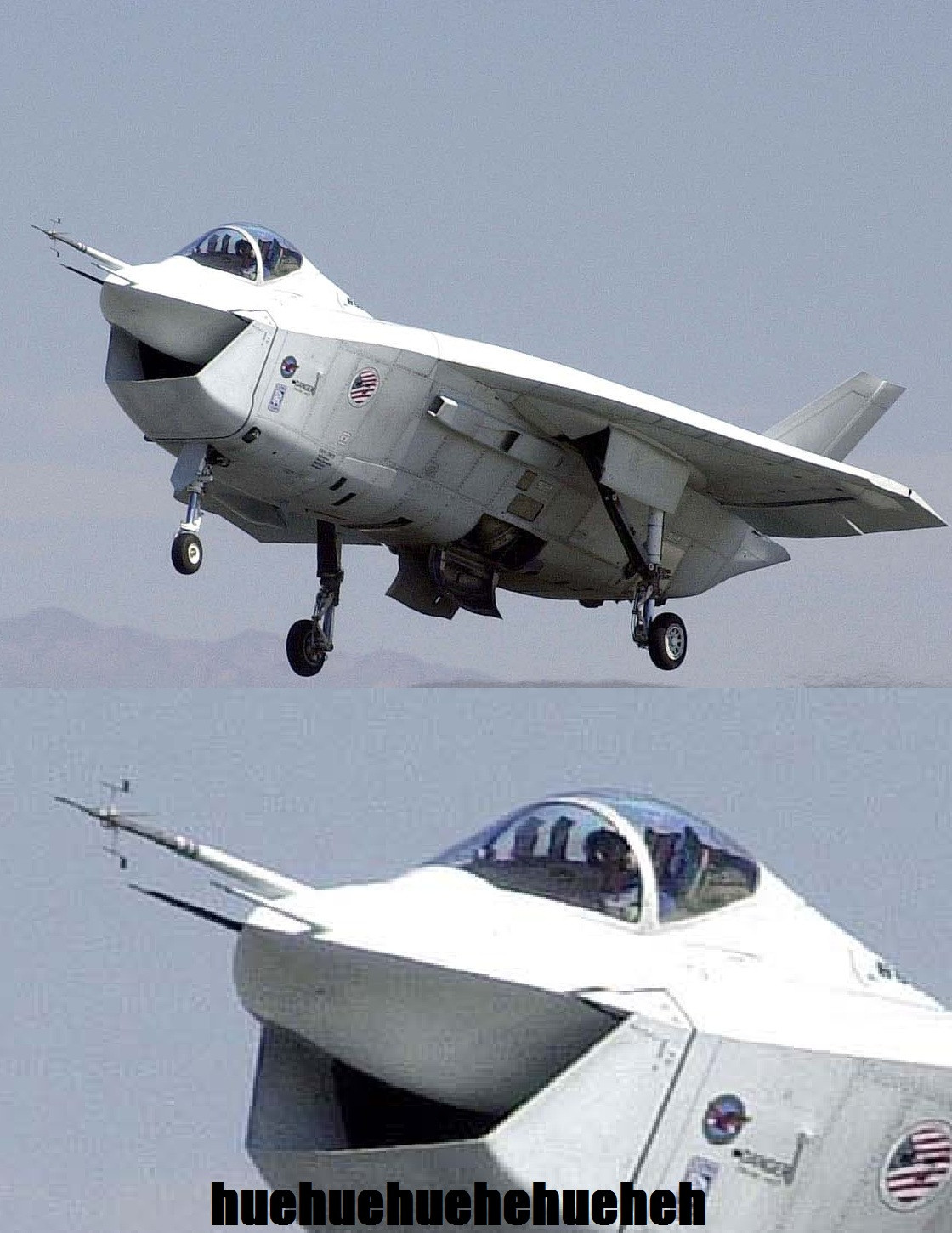 X-32 is having a good time   Laughing Lizard / hhhehehe ...