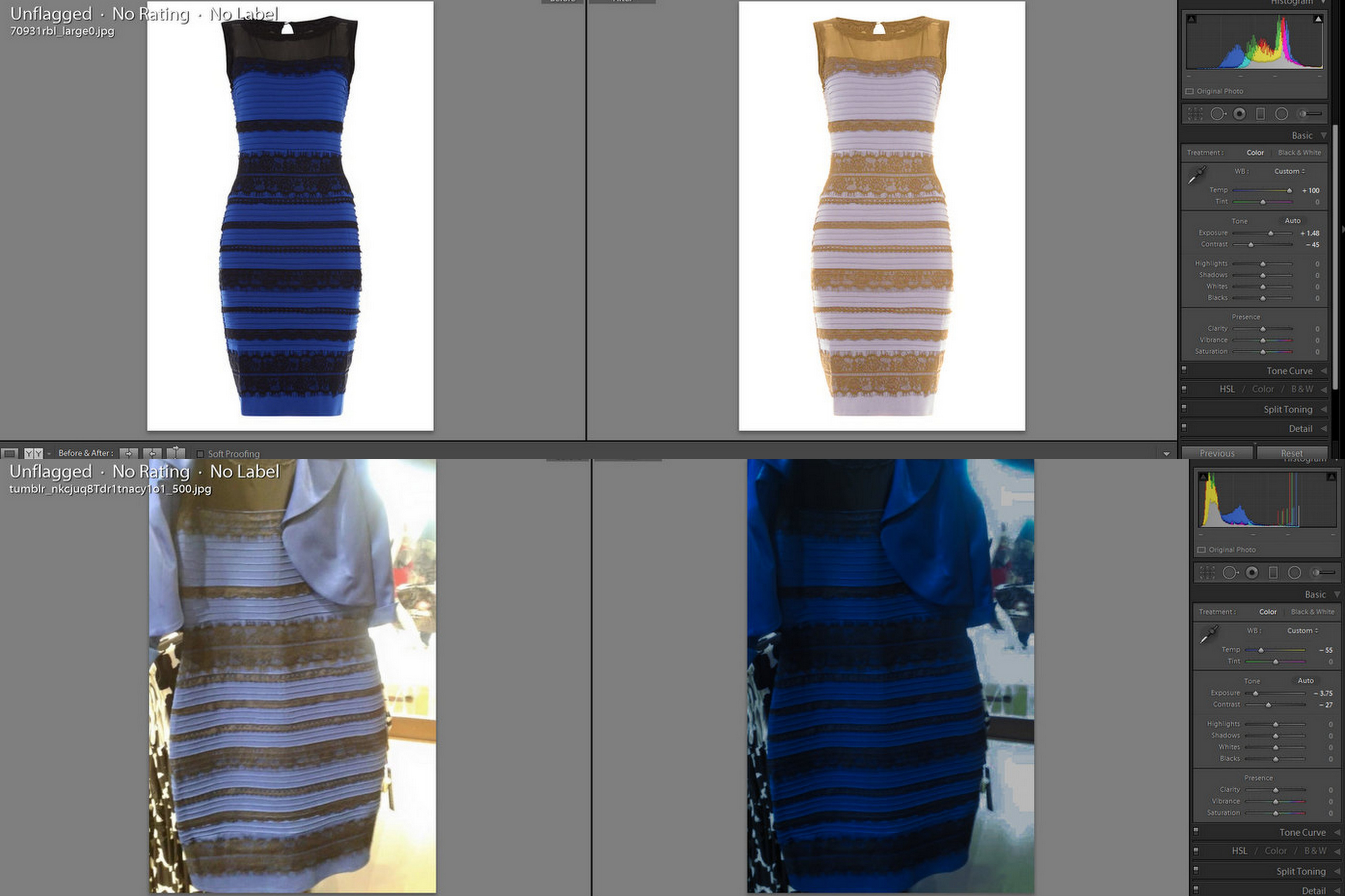 Black or blue dress original pictures
