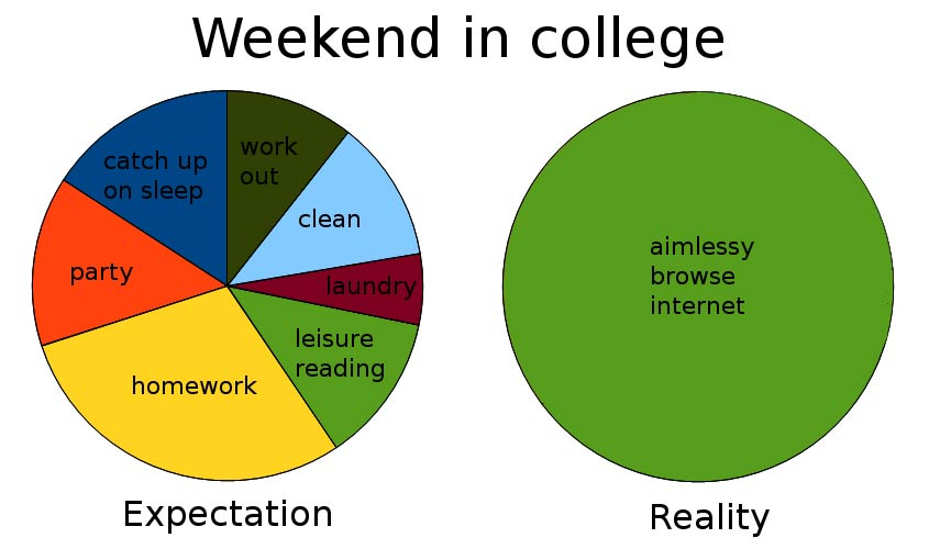 The expectations and reality of college life