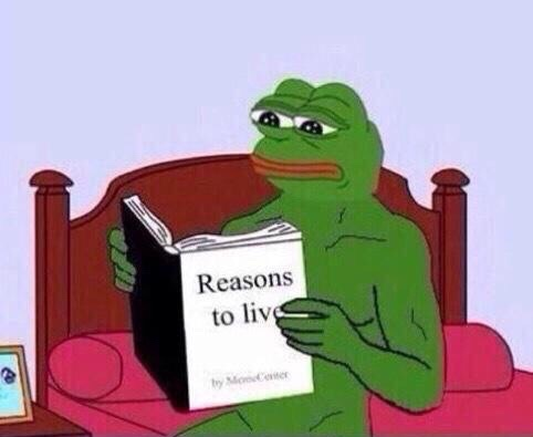 b3f reasons to live peter parker reading a book know your meme,Know Your Meme Pepe