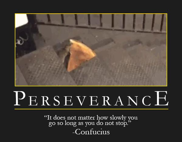 perseverence essay Free essays on perseverance get help with your writing 1 through 30.