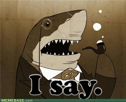 287 fancy shark approves of your post sharks know your meme