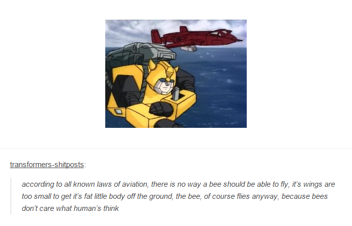 Transformers And Meme Copypasta About How Bees Should Not Be Able To Fly