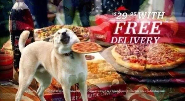 10b free delivery frisbee doge know your meme