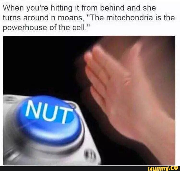 8fd when you're hitting it from behind n she turns around and moans \