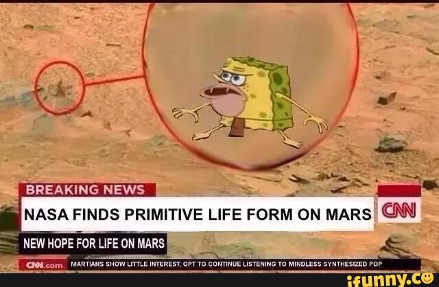 Funny Man Cave Meme : Nasa finds primitive life form on mars spongegar