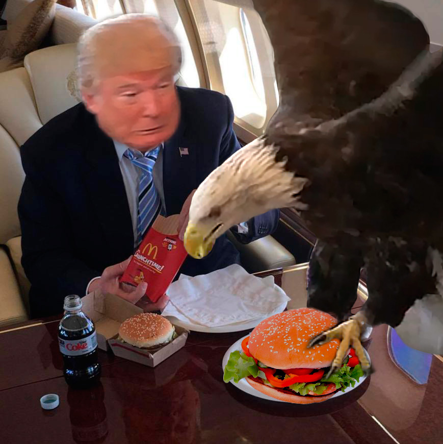 575 bald eagle attack donald trump's mcdonald's meal know your meme