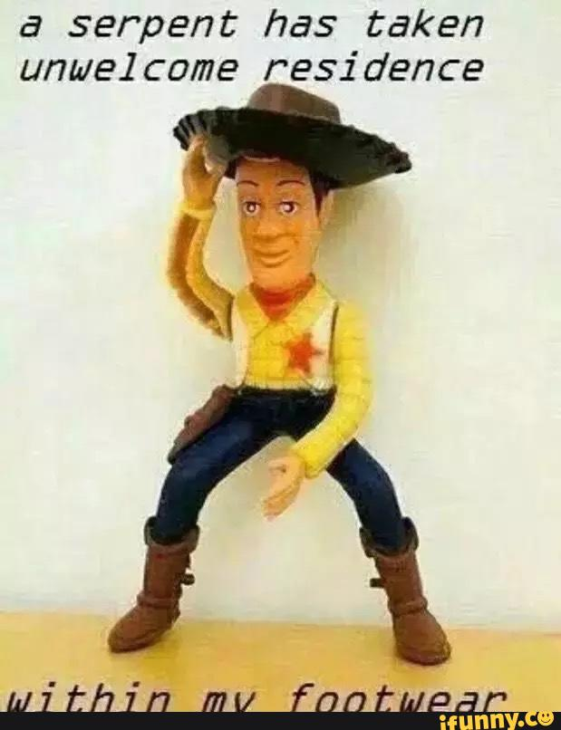 f8e classy woody toy story know your meme