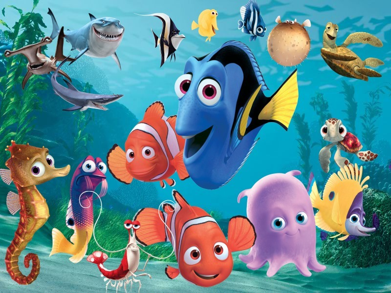 Main characters finding nemo know your meme for Fish cartoon movie
