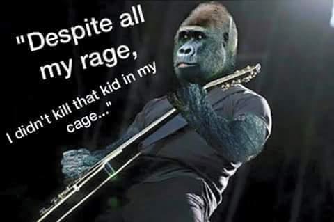 491 despite all my rage i didn't kill that kid in my cage\