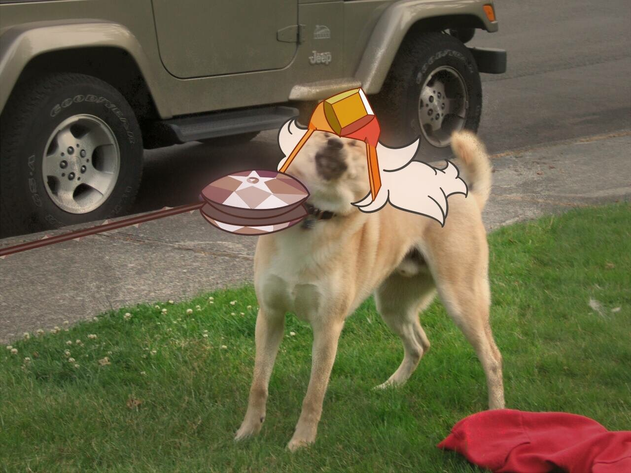 0fa earthlings frisbee doge know your meme