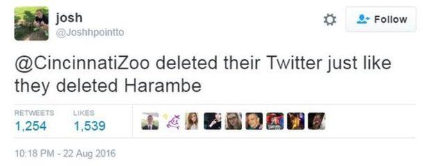 e25 cincinnati zoo deletes twitter account harambe the gorilla know