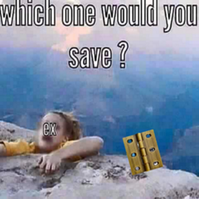 Whhich One Would You Save Door Hinge Memes Know Your Meme