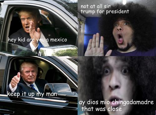 281 o dios mio donald trump know your meme