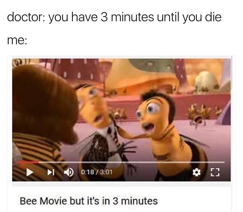 d60 3 minutes bee movie know your meme
