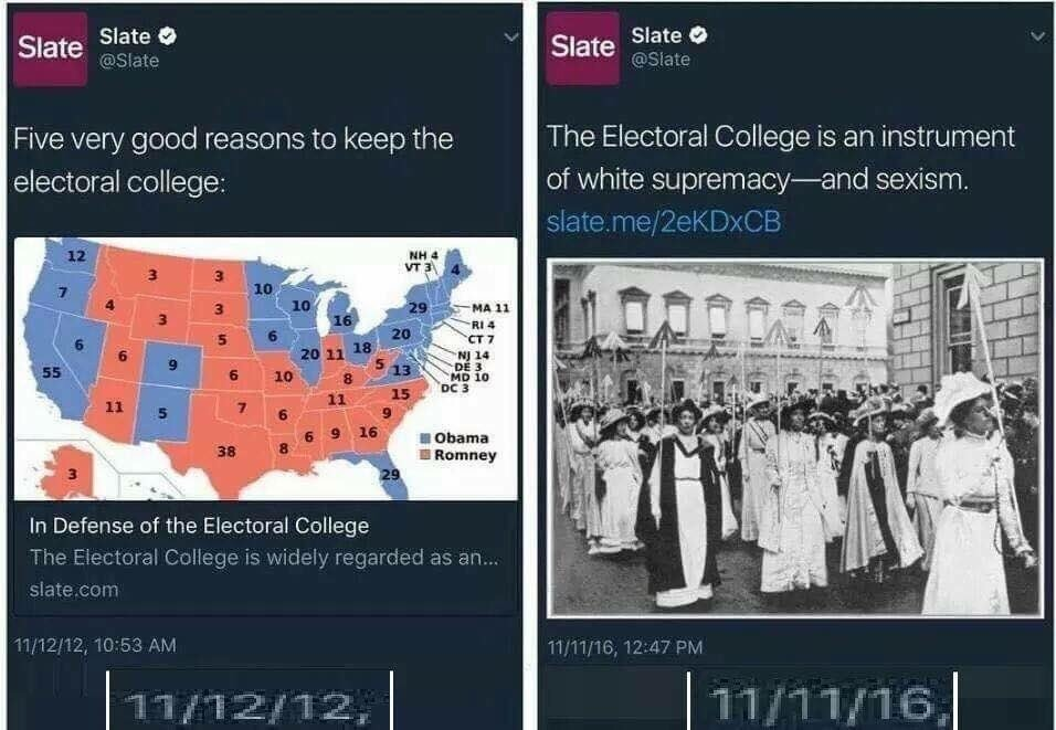 Electoral College Funny Meme : Animal capshunz voting funny animal pictures with captions