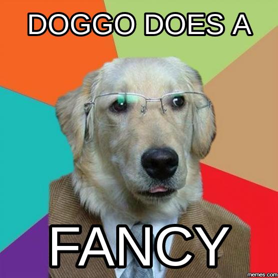 b58 does a fancy doggo know your meme