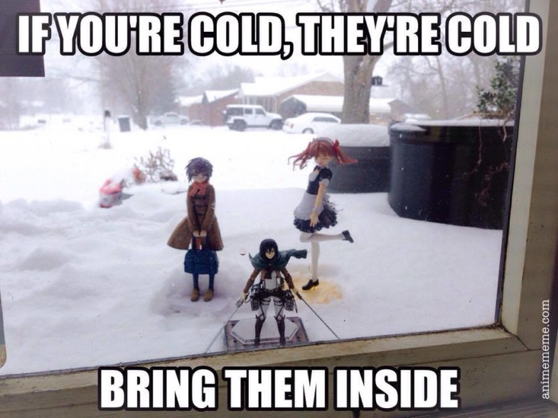 6f4 winter psa if you're cold, they're cold know your meme