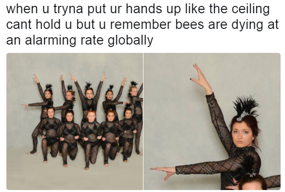7cf when u tryna put ur hands up like the ceiling cant hold u bees are