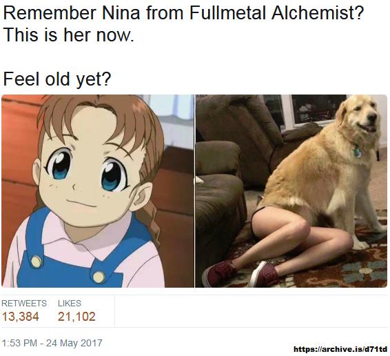 Fma Dog Girl Meme
