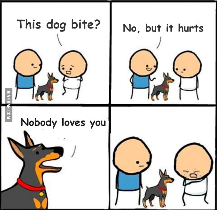b2c nobody loves you does he bite? know your meme,Does Your Dog Bite Meme