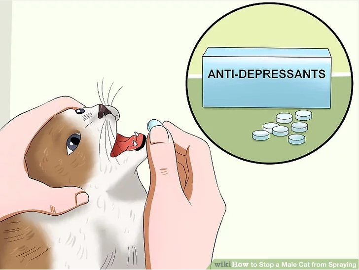 18d anti depressants pills that make you stare know your meme