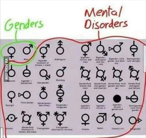 661 genders vs mental disorders there are only 2 genders know your meme