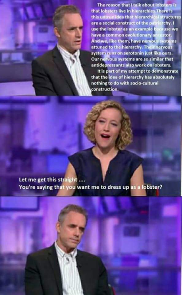 Jordan Peterson vs. Feminist: Lobsters | Jordan Peterson | Know Your Meme