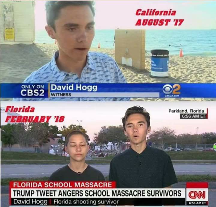 David Hogg Conspiracy Theory Image