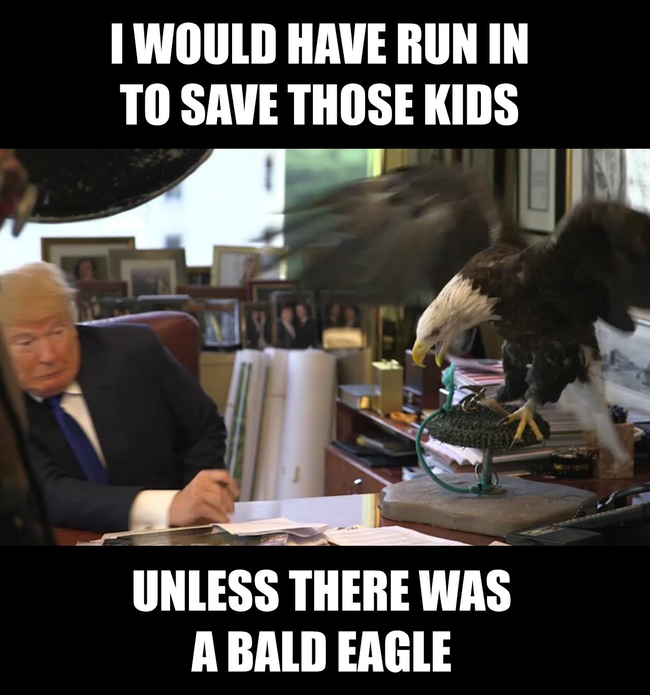 15c trump vs eagle donald trump know your meme