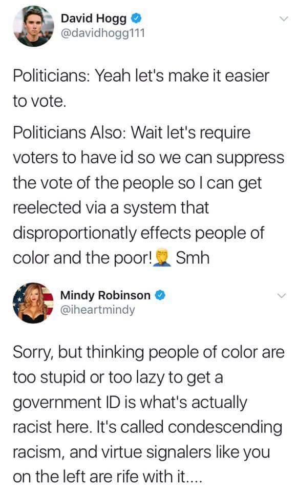 make voter id