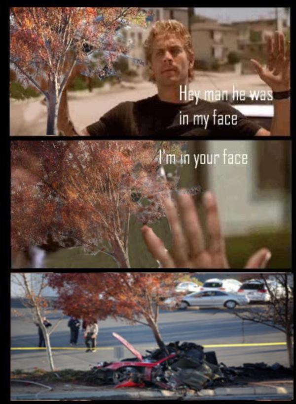 Tree in my face | Paul Walker's Death | Know Your Meme