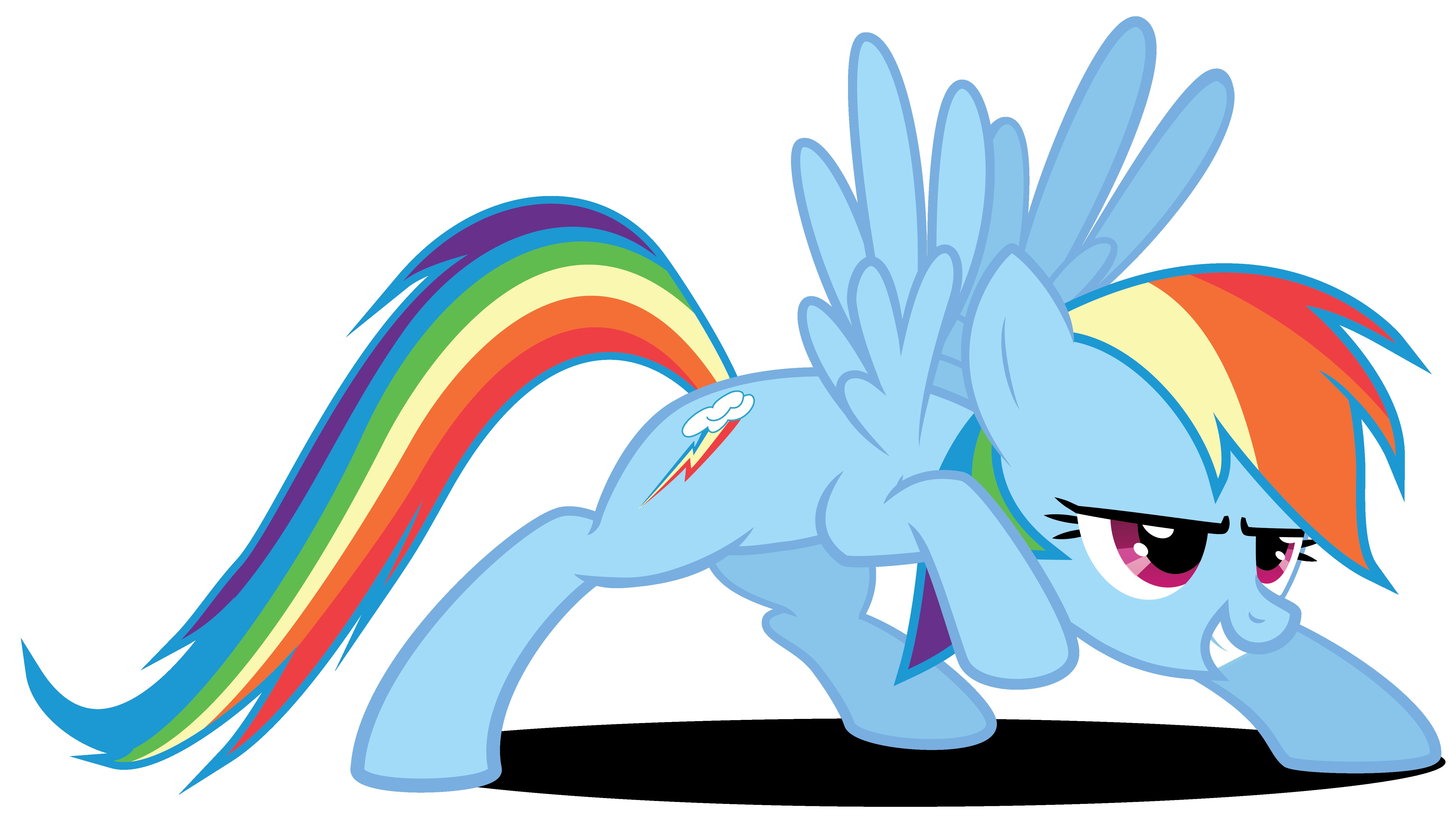 rainbow dash en garde  my little pony friendship is